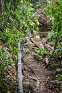 Finca Nube Nueve - Renewable Energy - Sustainable Living Expedition - Upward Spirals (12)