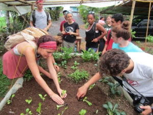 Sustainable Living Expedition to the Diamante Center with Veritas (100)_result