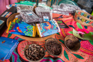 Vida Autentica on the Sustainable Living Expedition with Upward Spirals in Costa Rica (16)