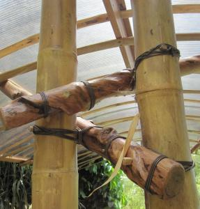 Natural-building-with-bamboo-at-La-Joya-Del-Sol-on-the-Sustainable-Living-Expedition-2