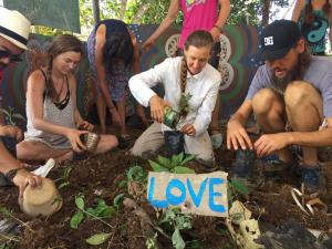 Sustainable Living Expedition with Upward Spirals 2017 Feb (127)