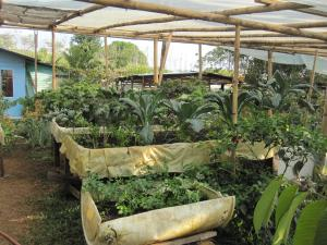 Sustainable Living Expedition with Upward Spirals 2017 Feb (142)