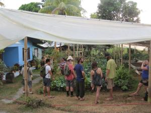 Sustainable Living Expedition with Upward Spirals 2017 Feb (152)