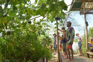 Sustainable Living Expedition with Upward Spirals 2017 Feb (466)